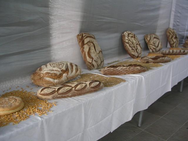 16 Οκτωβρίου 2012 Παγκόσμια Ημέρα Ψωμιού